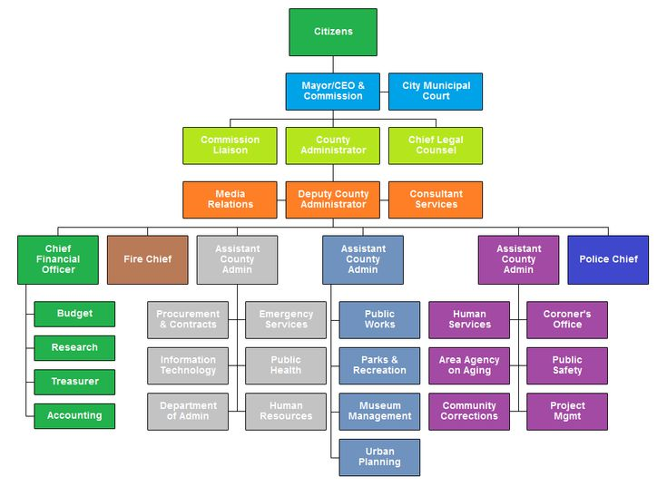 Best Org Chart Examples Images On   Charts Crossword