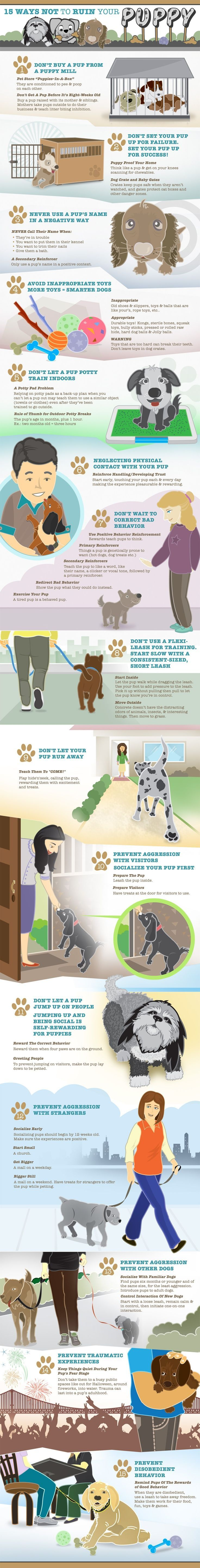 """Puppy Training Graphic A lot of good tips, but no puppy can actually be """"ruined,"""" :)"""