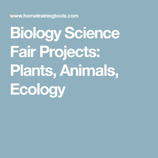 Biology Science Fair Projects: Plants, Animals, Ecology
