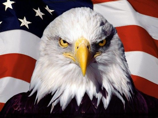God Bless The USA: 9 Horrible Patriotic Songs | AMOG