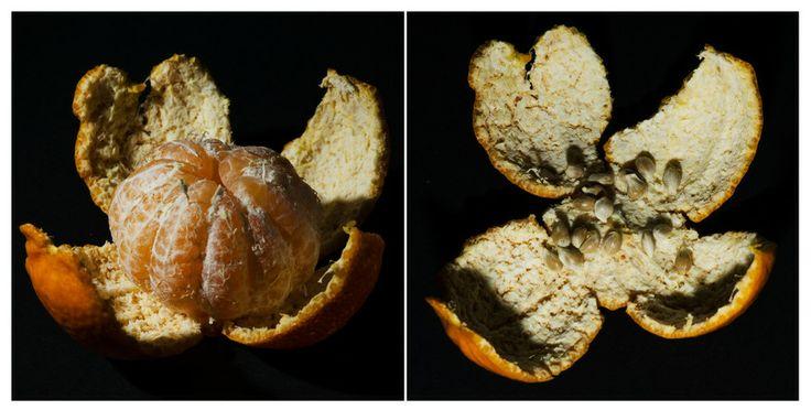 Mandarin by Denys Tsutsayev on 500px