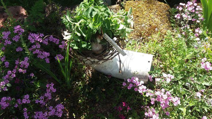 Vintage Gartendeko - Shabby-Ofenrohr - ein Designerstück von HausNo7 bei DaWanda
