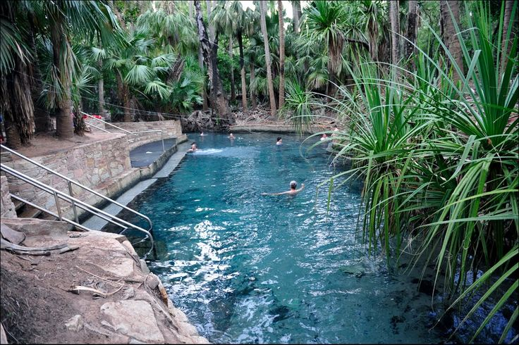 Rainbow Pool Mataranka Springs The Rainbow Springs And Thermal Pool Sector Of The Park Are A Major Attraction For Visitors Th Rainbow Pools Natural Pool Pool