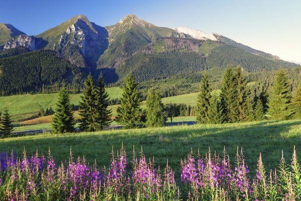 Groupon Travel - Podhale: Pensjonat w Białce Tatrzańskiej