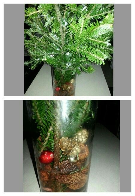Christmas Tree Color Spray : Best images about holidays christmas on
