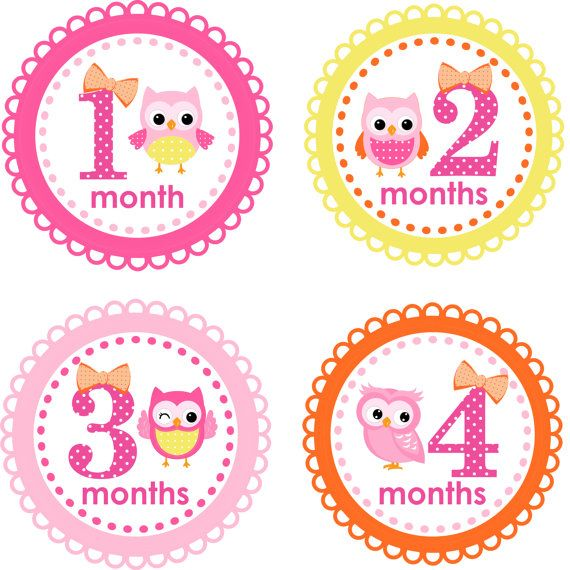Monthly Baby Stickers Pink Yellow Owl by LittleLillyBugDesign, $9.00