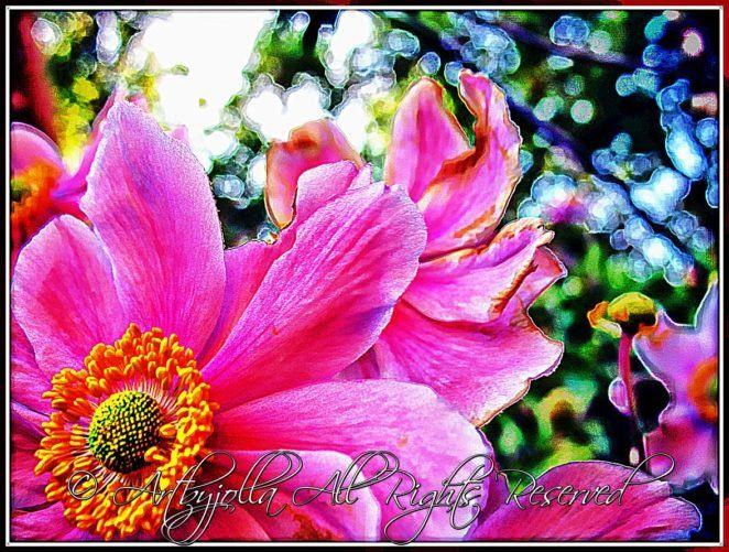 Anemone blossom..by ©Artbyjolla