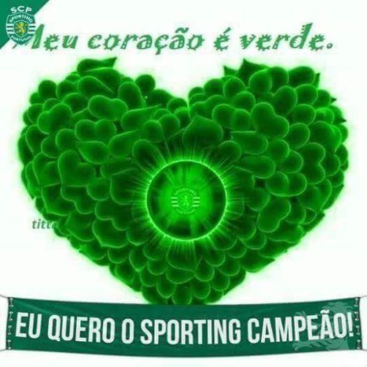 Foto de Marta Amaral.SPORTING Eu acredito #sporting #sportingclubedeportugal #scp #campeao #euacredito #portugal #lisboa