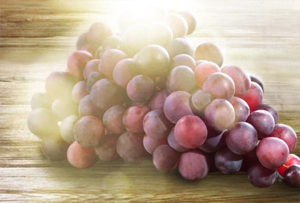 Die Traube – Kaum eine Frucht ist so vielfältig wie die Traube. Es gibt mehr als 16.000 Rebsorten. Die Farbe der Schalen reicht von hellgrün bis schwarzblau. Das saftige Fruchtfleisch schmeckt je nach Sorte süß oder säuerlich. Trauben sind eine natürliche und köstliche Erfrischung, die man genussvoll Frucht für Frucht naschen kann.
