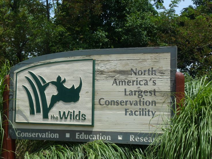 Image result for the wilds conservation center