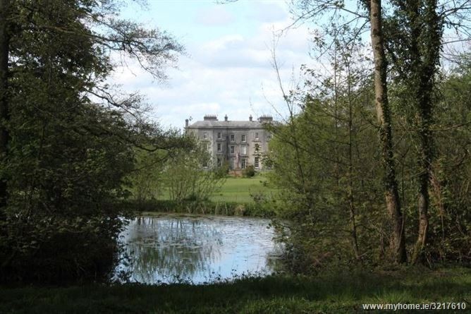 Loughton House, Moneygall, Co Offaly. 14 Bed, asking price €2,750,000, brought to market by Ganly Walters