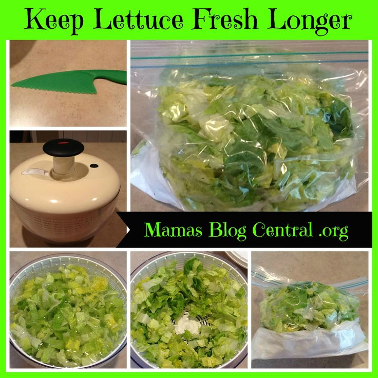 Keep Lettuce Crisp Longer! Never Buy Bag Lettuce Again!!   There are so many tips that I want to share with you and with summer coming a lot of people tend to eat more lettuce. And a lot of people often wonder How do I store lettuce so it lasts longer? How often do you …