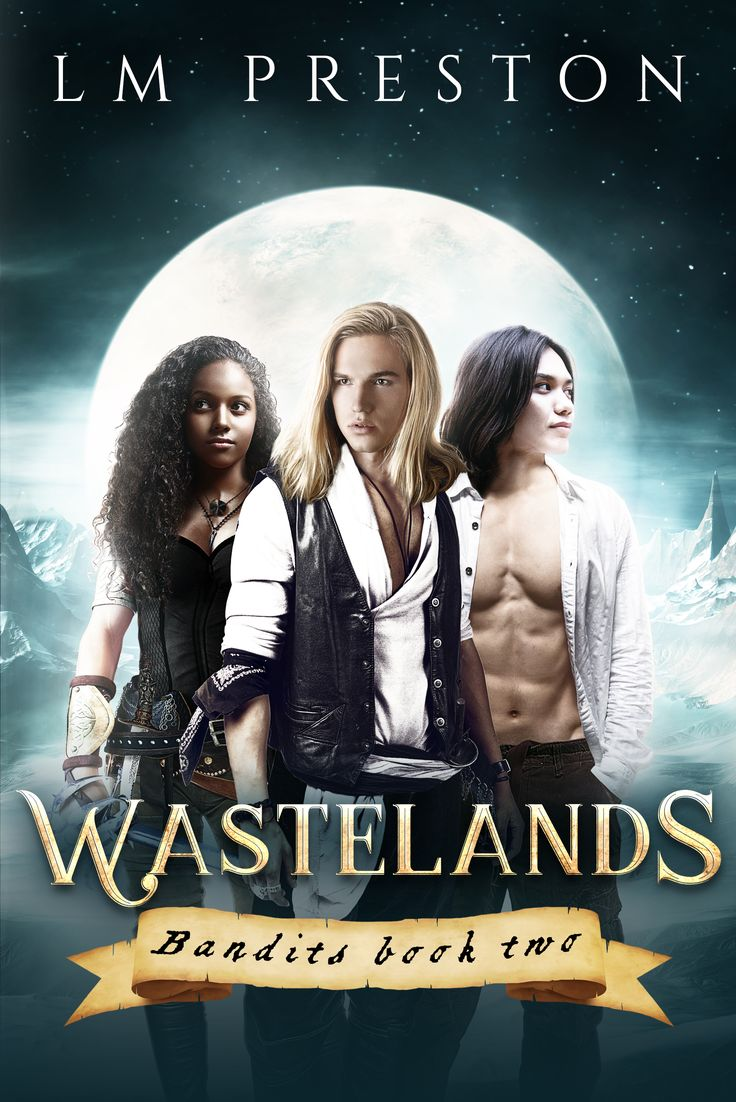Wastelands, book 2 in the Bandits series