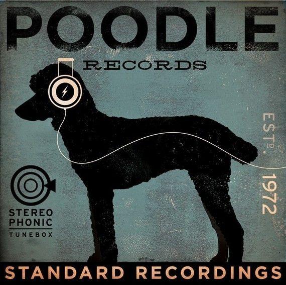 <3 poodles