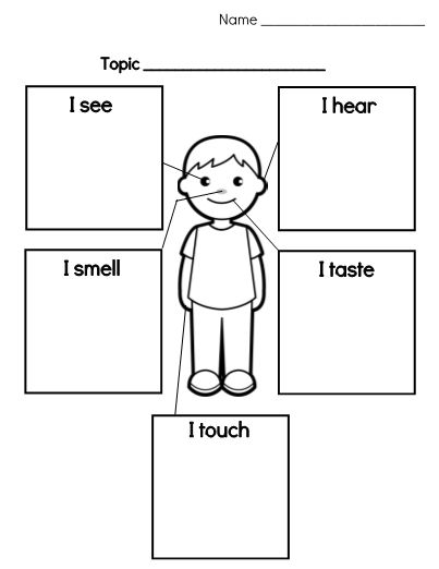 Use this 5 senses graphic organizer as part of your