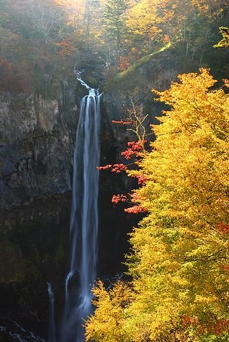 #Tochigi #JapanWeek  Subscribe today to our newsletter for a chance to win a trip to Japan http://japanweek.us/news  Like us on Facebook: https://www.facebook.com/JapanWeekNY