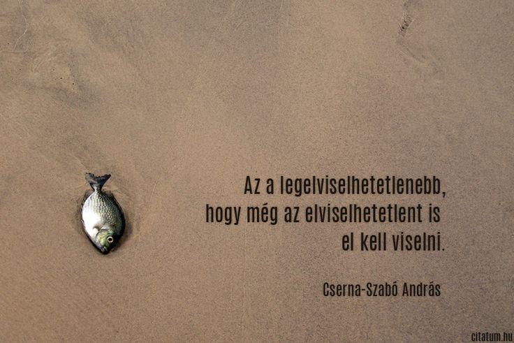 Cserna-Szabó András idézet az elviselhetetlenről.