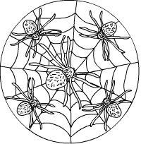 Spinnen-Mandala