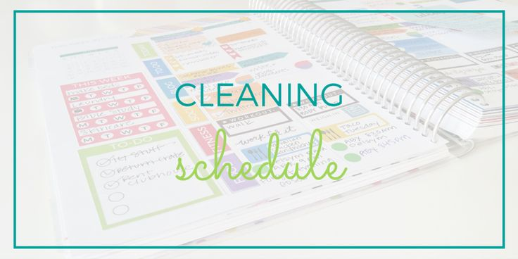 Cleaning Schedule – Limelife Planners
