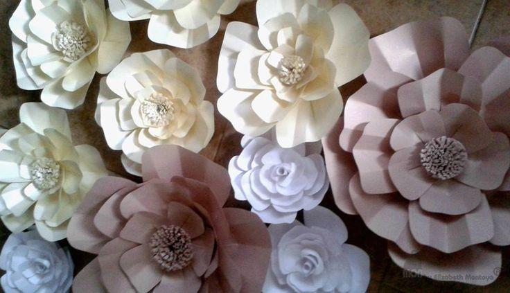 Flores elimon