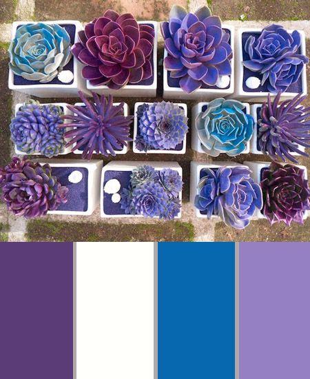 In het 'Kleurpalet van de week' vind je deze keer een palet vol vrolijke kleuren paars.