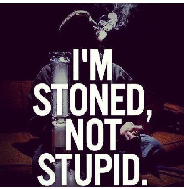 Fucking stupid is weed