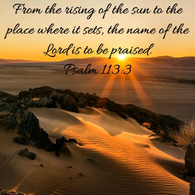Bible app, Psalms and The bible on Pinterest