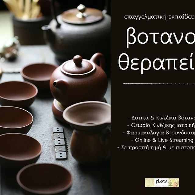 Learn more: http://jointheflow.weebly.com/votanotherapeia.html  #votana #herbalmedicine #learnHerbs #drinktea #teapots #healingwithherbs #botana