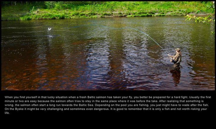 59 best fly fish sweden images on pinterest fishing for Fly fishing films