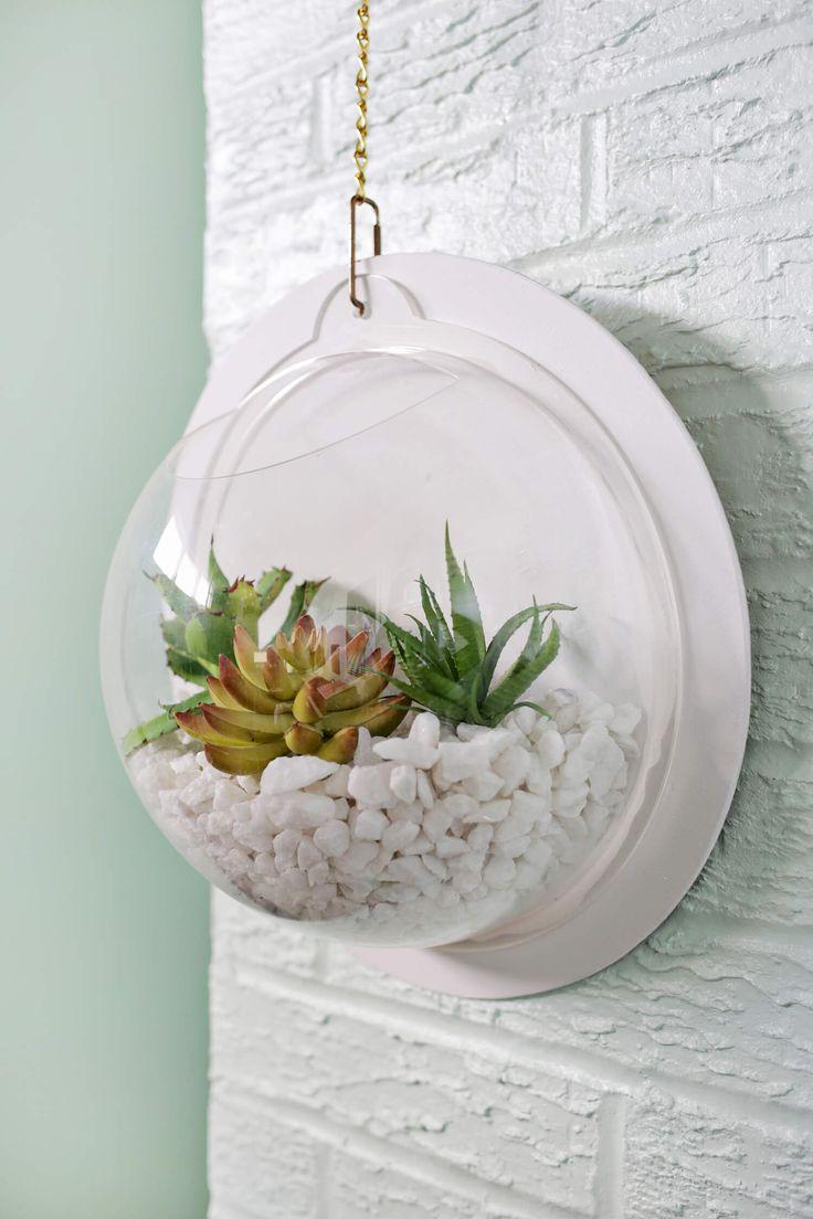 Hanging Terrarium Wall DIY – A Beautiful Mess