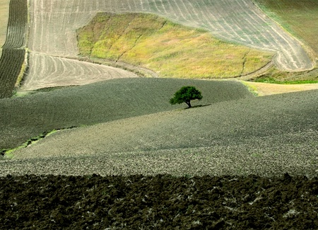 Franco Fontana - appunti siciliani