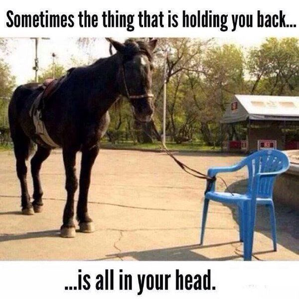 "Eleni Karatzia på Twitter: ""Sometimes the thing that is holding you back is all…"