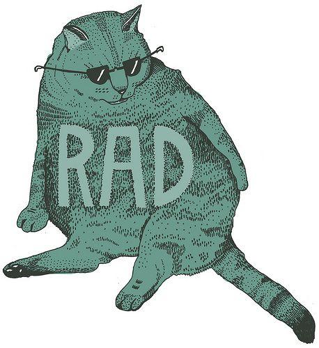 TOBY CAT !!!!!! (JEREMY'S CAT)