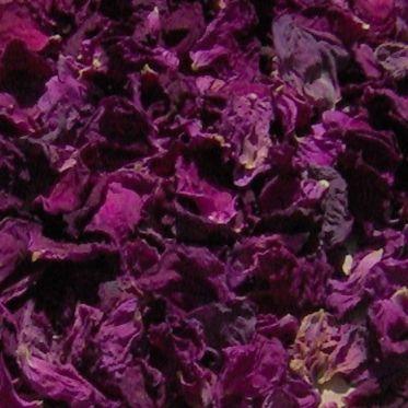 Rosenlikör mit Vanille Rezept   Küchengötter