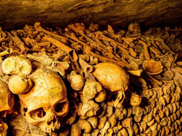The death crypts in Europe a bones for more than 50 Mills.humans under castles and churches along Europe century 14-19