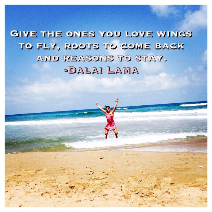 Fly Wings  Dalai Lama
