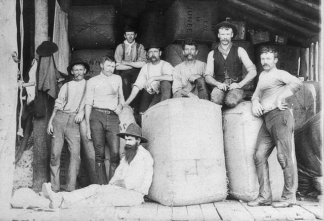 Shearers with bales to be stripped to Junee railhead. George Howard (the selector) is seated against bale - Ariah Park, NSW, c. 1896 - State Library of New South Whales #shearers #photography #australia #history #vintage #documentation #men #moustache #mustache #1800s #historic
