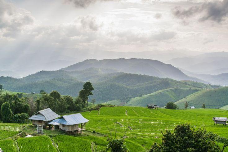 Voilà un endroit qui ne laisse pas indifférent. Certainement l'un de mes coups de cœur en Thailande. C'est un endroit difficile d'accès, donc peu connu et pas encore beaucoup visité. Situé au pied du Doi Inthanon, le fameux parc national à 60km au sud-ouest de Chiang Mai, Ban Pa Pong Pieng est le genre de petit bijou qui comblera ceux …