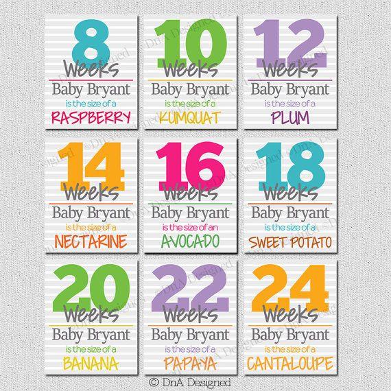 Bi Weekly Digital Pregnancy Weeks Prints - Photo Prop - Weeks 8-40 Baby Announcement - DIY - {9PRS} by DnADesigned
