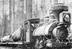 Michigan History in the 1800 | Pictorial: Historical Railroads -- Bay County, MI / Bay-Journal