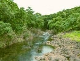 Mumbai Before You Die - 'The Biggest City Park In The World' - Sanjay Gandhi National Park