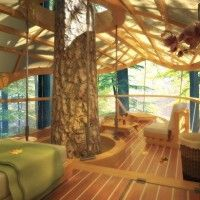LEED Certified Tree Top Accommodations in Ontario, Canada