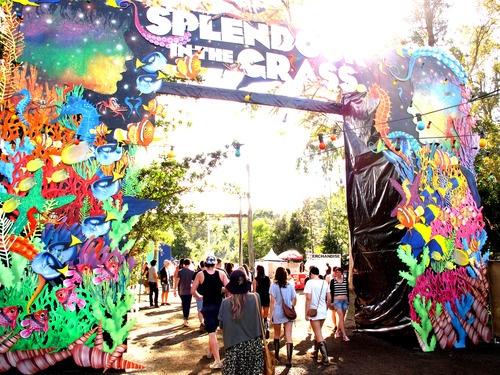 SitG Concert Gate, Splendour in The Grass Byron Bay