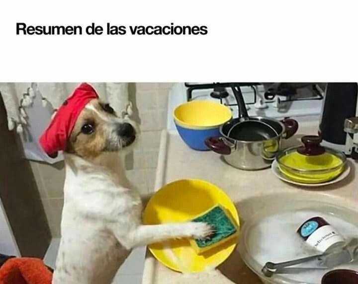 Clásico cuando pasas vacaciones en la casa de la abuela y tu mamá te dice ayudele a su abuela #vacacionesotrabajo