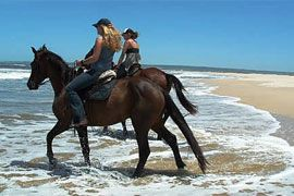 Take long beach horse rides and take it the serene environment in Jeffreys Bay & St Francis.