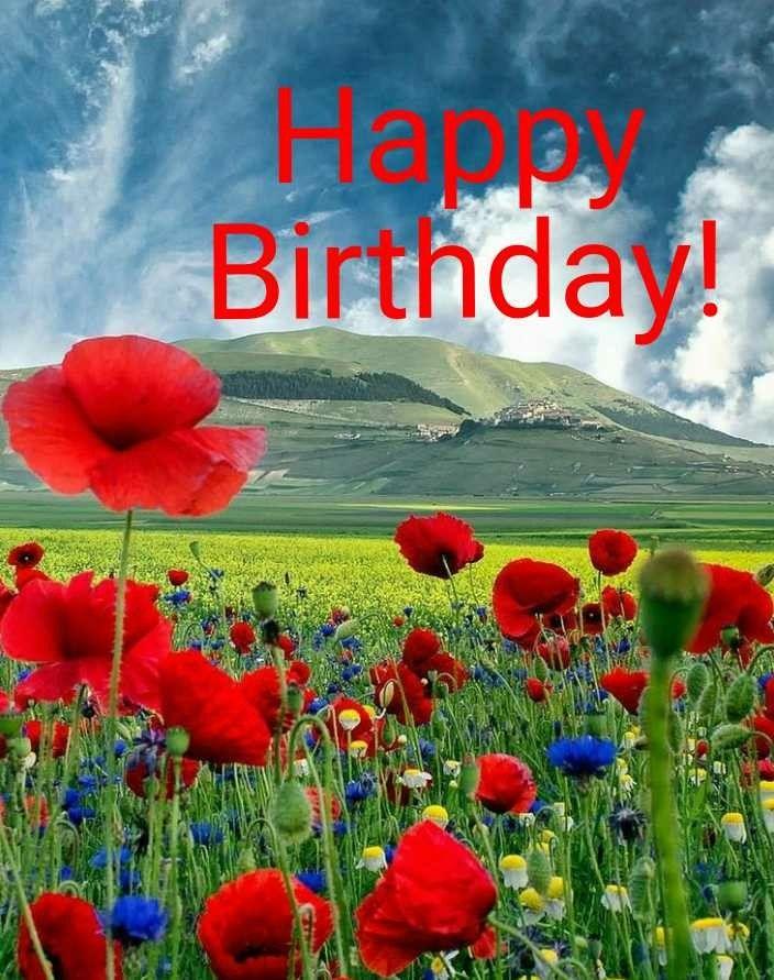 Pin By Taufiq S On Happy Birthday And Sayings Beautiful Photography Nature Beautiful Nature Nature Photography
