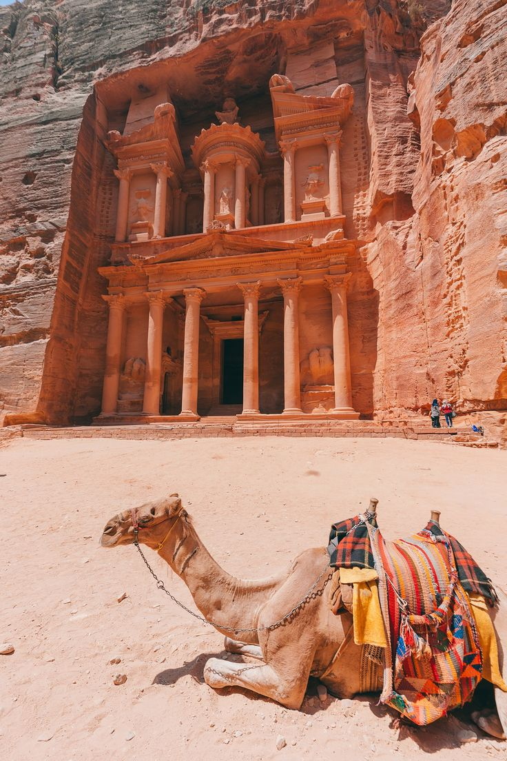 Experience a day tour of the wonder of the world petra and hollywood s preferred movie backdrop wadi rum