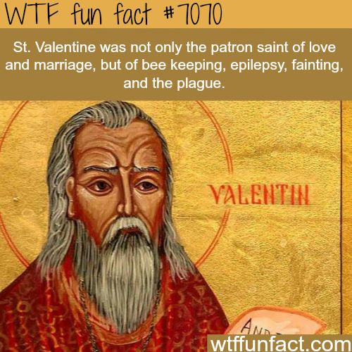 125 best cool facts images on pinterest fun facts cool facts fun valentines facts