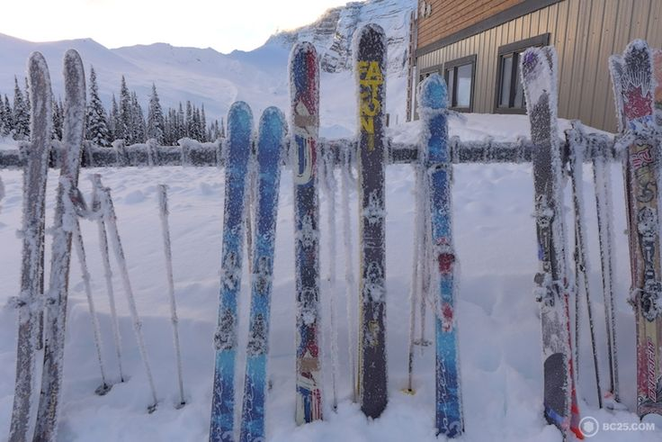 Hoar Frost on the skis after a cold night at campbell ice field chalet