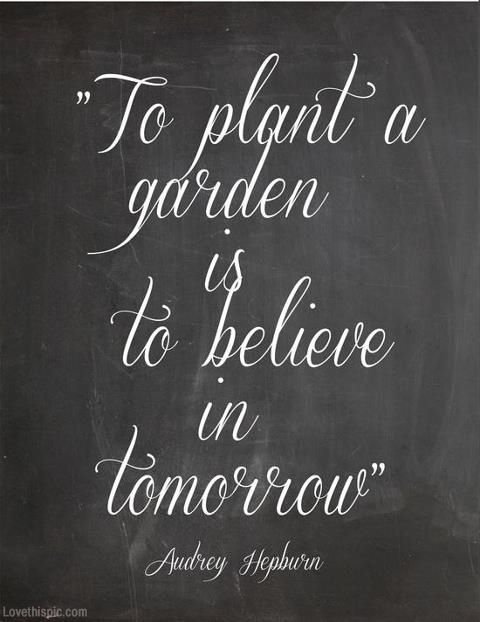 To plant a garden quotes life faith believe
